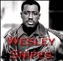 Actor Wesley Snipes - Tax Cheat or Tax Pro-Tester?